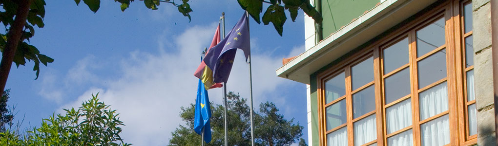 Banderas Hotel casa Vieja del Sastre
